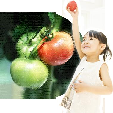 農業体験イメージ